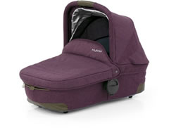 Hybrid Wild Orchid Carrycot